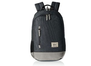 Gear Classic 24 ltrs Charcoal Grey and Grey Casual Backpack
